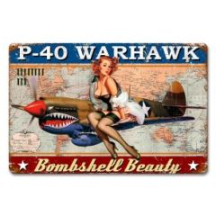 Curtis P-40 Warhawk Pinup Girl Metal Sign SIG-0302Z