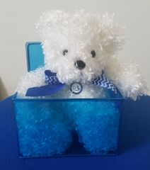 Plush Bear Gift Basket