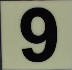 PHOTOLUMINESCENT DOOR NUMBER 9 SIGN (GLOW IN THE DARK HIGH INTENSITY SELF STICKING PVC HEAVY DUTY STICKER SIGN AND APT # MARKING 1X1)