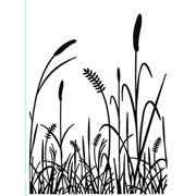 "Grass Embossing Folder (4.25""x5.75"") by Darice"