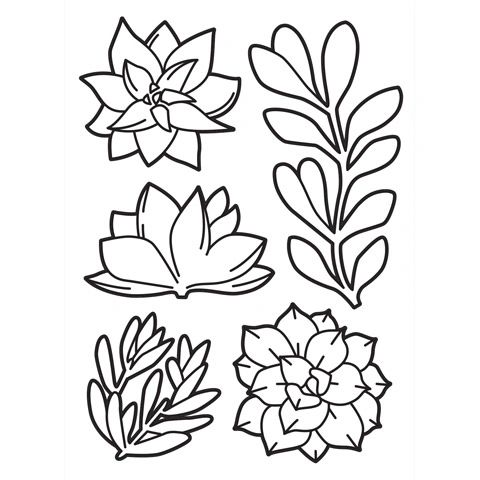 "Succulents Embossing Folder (4.25""x5.75"") by Darice"