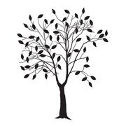 Leafing Tree Embossing Folder by Darice 4.25 x 5.75