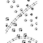 "Animal Tracks Embossing Folder (4.25""x5.75"") by Darice"