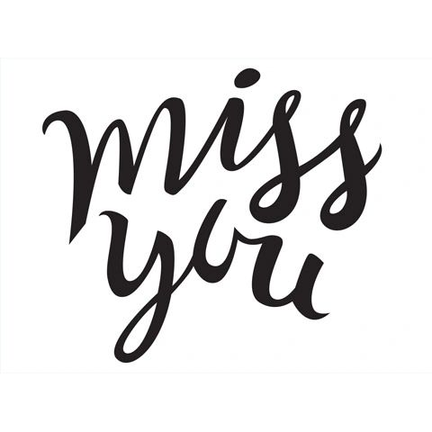 Miss You Sentiment Embossing Folder 4.25 x 5.75 by Darice