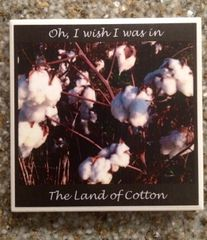 Land of Cotton - Original Mississippi Delta Photography Coasters