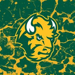 NDSU Head Logo Cracks 3 Square Sandstone Coaster