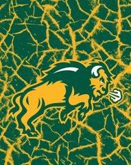 NDSU Body Logo on Cracks 1 Microfiber Card Caddy