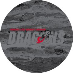 MSUM Dragons in Grey Concrete 2 on Black Sandstone Car Coaster