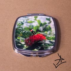 Square Small Postman Butterfly Compact
