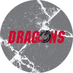 Dragons in Red Black Dragon Cracks 1 on Grey Sandstone Car Coaster