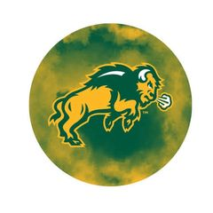 NDSU Body Clouds 1 Pewter Key Chain or Money Clip