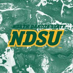 NDSU Concrete 2 Square Sandstone Coaster