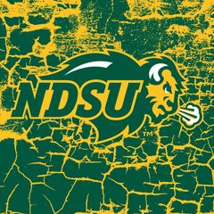 "NDSU Primary Logo Cracks 1 4.25"" Ceramic Tile"