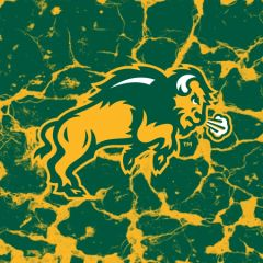 NDSU Body Logo Cracks 3 Square Sandstone Coaster