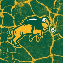 NDSU Body Logo Cracks 2 Square Sandstone Coaster