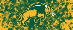 NDSU Body Logo on Confetti 4 Rectangle Ring Stand™ Phone Holder
