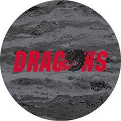 Dragons in Red Black Dragon Concrete 2 on Black Sandstone Car Coaster