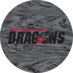 MSUM Dragons in Black Concrete 1 on Grey Sandstone Car Coaster