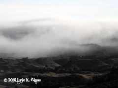 Heavy Fog Rolling In