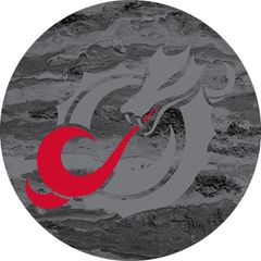 MSUM Grey Dragon Concrete 2 on Black Sandstone Car Coaster