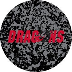 Dragons in Red Black Dragon Confetti 1 on Black Sandstone Car Coaster