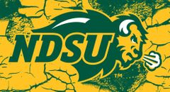 NDSU Primary Logo on Cracked background 1 Business Card Holder
