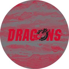 Dragons in Red Black Dragon Concrete 2 on Red Sandstone Car Coaster