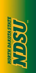 NDSU Gradient 1 Dauphin™ Hard Rubber Phone Case