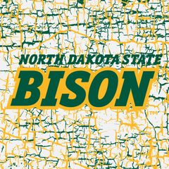 "4"" Square North Dakota State Bison Logo Cracks 3 Sandstone Coaster"
