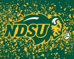 "8"" x 10"" NDSU Primary Logo Confetti 1 Aluminum"