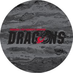 MSUM Dragons in Black Concrete 2 on Black Sandstone Car Coaster
