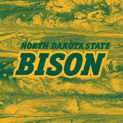 NDSU Bison Concrete 1 Square Sandstone Coaster