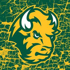"4"" Square NDSU Head Logo Cracks 2 Sandstone Coaster"