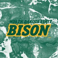 NDSU Bison Concrete 2 Square Sandstone Coaster