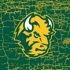 NDSU Head Logo Cracks 1 Square Sandstone Coaster