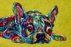 "I'm Not Moving - French Bulldog, Boston Terrier Metal Print, SIZE 10"" h x 15"" w"