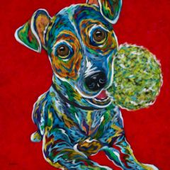 Hurry Up - Jack Russell Metal Print, SIZE 12' sq.