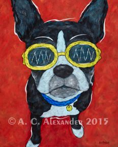 I'm The Coolest Of Them All - Boston Terrier