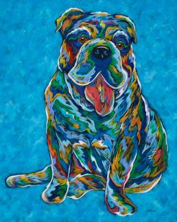 More To Love - English Bulldog