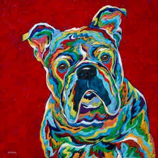 "You've Gotta Be Kidding! - English Bulldog METAL PRINT SIZE 10"" X 10"""