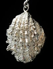 Spiney Sea Shell Pendant