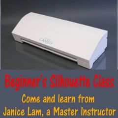 Beginner's Silhouette Class