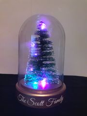 Personalised Light up LED tree in dome