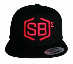 Hot Pink on Black Snapback