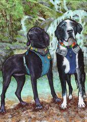 "9""x 12"" Custom Pet Portrait."