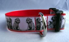Handmade Dalmation Dog Collar