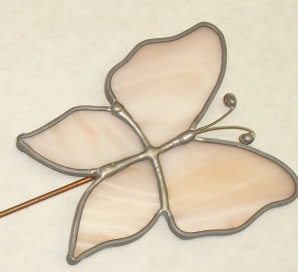 Plant pretty-Butterfly