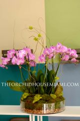 Elegant Purple Phalaenopsis Orchid Arrangement in a Glass Container
