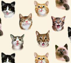 Elizabeth Studio - Pet Selfies - Cats