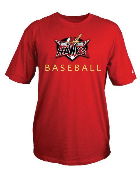 Hawks youth screen print, full color logo, performance tee
